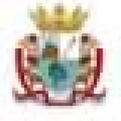 Catálogo del Archivo Municipal de la Laguna.  Por Leopoldo de la Rosa Olivera.  …