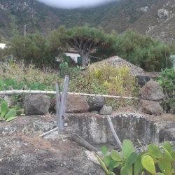 Lagar El Draguillo (Parque Rural de Anaga) – Historia de Anaga 😍 –