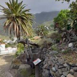 El Lagarito, lagar que se ubica en el centro del pueblo, reflejo de la important…