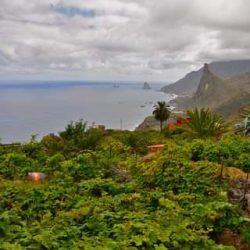 ¡Feliz Dia de Canarias!