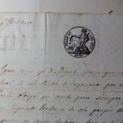 """Documento histórico.  …"""" Sepan cómo yo Don. Miguel Manrique alcalde actual de …"""