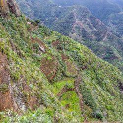 Por Chinamada (Tenerife). Rincones del Parque Rural de Anaga, declarado Reserva …