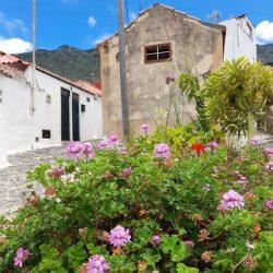 Taganana, calle Casas del Camino.
