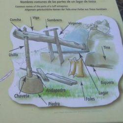 Nombres de las partes de un lagar, tallado en tosca.
