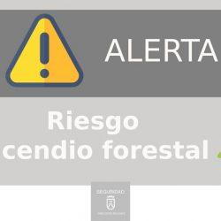La Dirección General de Seguridad y Emergencias del Gobierno de Canarias decla…