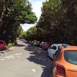 Colapso de de vehículos en la Cruz del Carmen,  la gran afluencia al parque rura…